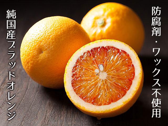 国産ブラッドオレンジ