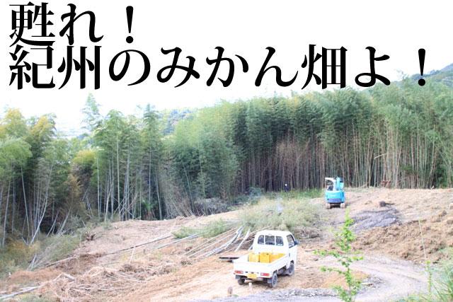 耕作放棄地解消