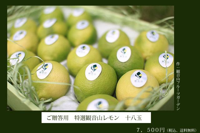 国産レモン特選