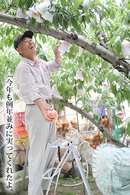 西王母 桃